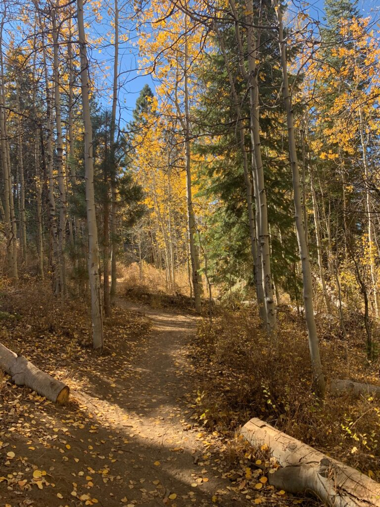 inline image showing Spooner Lake Trail in the fall season